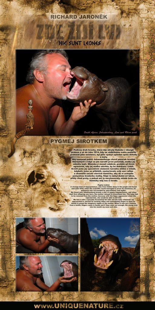 39 - Pygmej sirotkem - sloučené