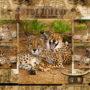 psaci-podlozka-a2-gepardi-smecka