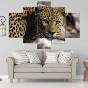 Big leopard LE 2957 - vzor 3