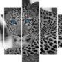Levhart 4189 – blue eye – vzor 0
