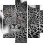 Levhart 4189 – yellow eye – vzor