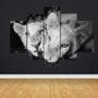 Lion 6672 – BW eye – vzor 2